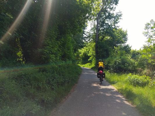 Am Donauradweg Richtung Wien