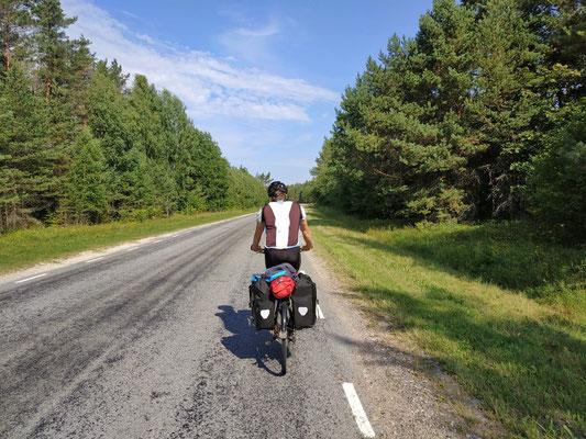 In Estland gibts viiieeel Wald