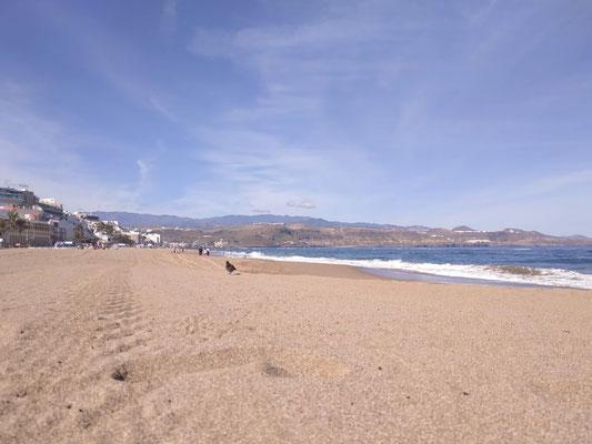 Am Strand, Las Canteras