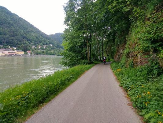 Eurovelo 6 entlang der Donau