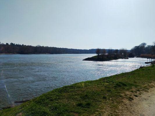 Ausblick auf die Donau