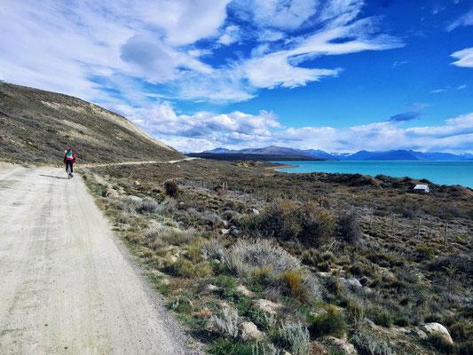 Flo radelt neben Lago Argentino in die Wüste