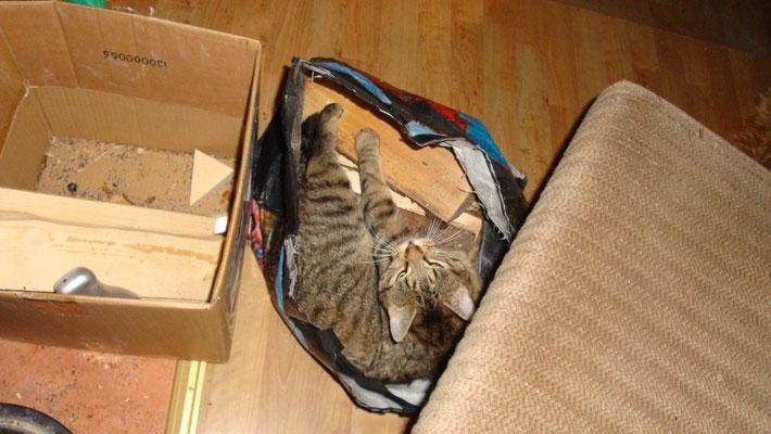 In der Holztasche kann man sich gut verstecken!