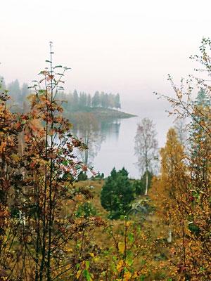 Regen und Nebel (Sicht von unserer Terrasse)