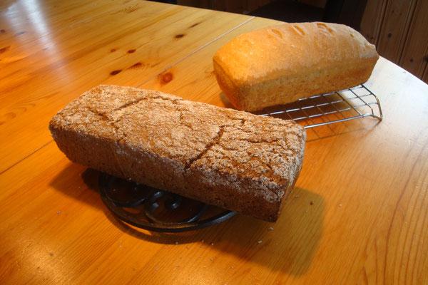 Das erste Brot aus dem Holzbackofen