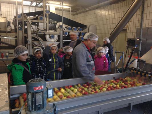 Bühlschüler besuchen die Firma Auer Fruchtsäfte