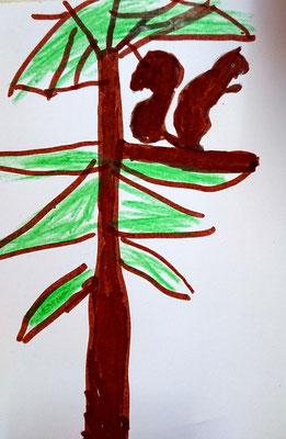 Nuxi auf Tanne (Kindergartenkind, ca. 6 Jahre)