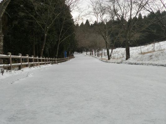 参道 今年初めて遅い積雪