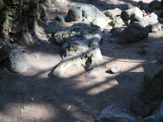 上向きに寝た女体の形の自然石