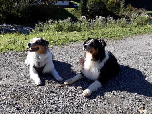Ginger und Tante Wonder