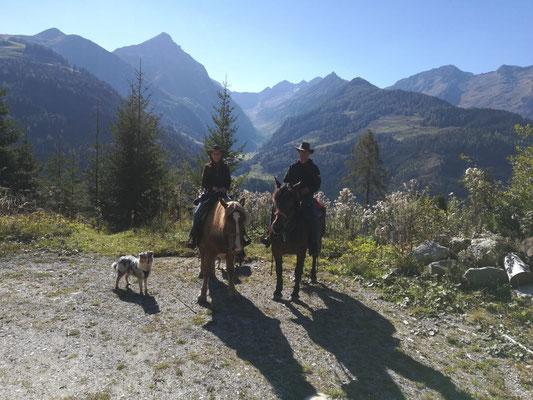 Ginger war so brav und durfte auch schon mit am Pferd laufen