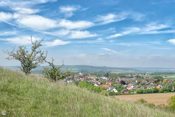 Blick vom Flöteberg auf Othfresen Mai - 2019 - Bild 002 - Foto: Regine Schadach - Olympus OM-D E-M5 Mark II - M.ZUIKO DIGITAL ED 12‑100 1:4.0 IS PRO
