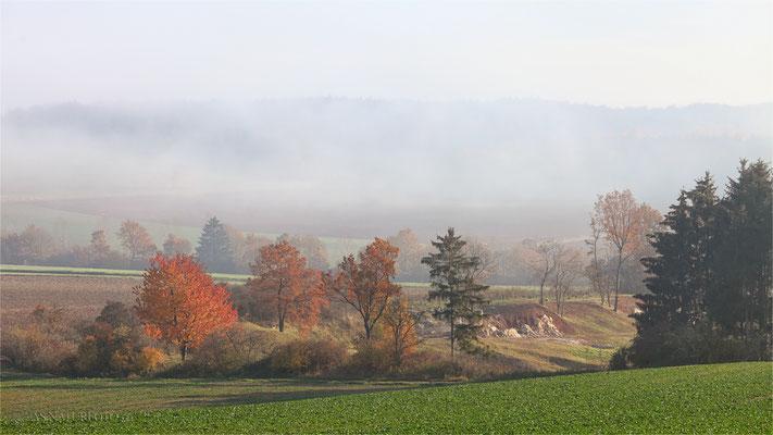 06. November 2011 - Blick auf die Gipskuhle Othfresen vom Galgenberg aus - Foto: Regine Schadach