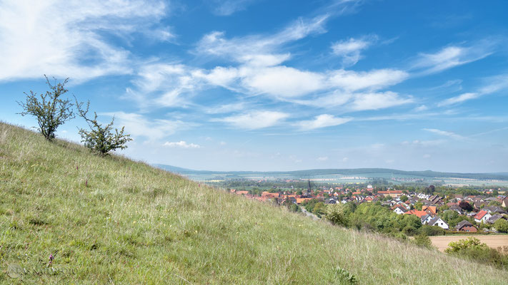 Blick vom Flöteberg auf Othfresen Mai 2019 - Bild 001 - Foto: Regine Schadach - Olympus OM-D E-M5 Mark II - M.ZUIKO DIGITAL ED 12‑100 1:4.0 IS PRO