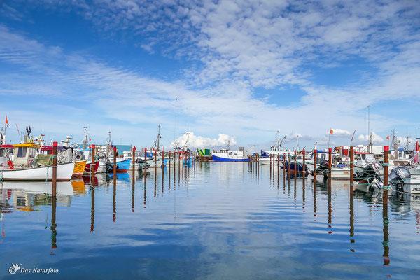 Dänemark Westjütland - im Hafen von Thyborøn - Bild 015 - Foto: Regine Schulz