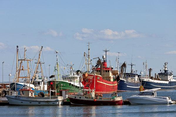 Dänemark Westjütland - im Hafen von Thyborøn - Bild 007 - Foto: Regine Schadach