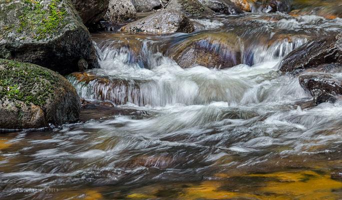 Nationalpark Harz / Im Ilsetal 1 - Foto: Regine Schadach - Olympus OM-D E-M1 Mark II - M.ZUIKO DIGITAL ED 12‑100 1:4.0 IS PRO