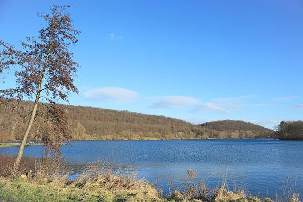 Vienenburger See bei Goslar - Januar 2015 - Bild 006 - Foto: Regine Schadach