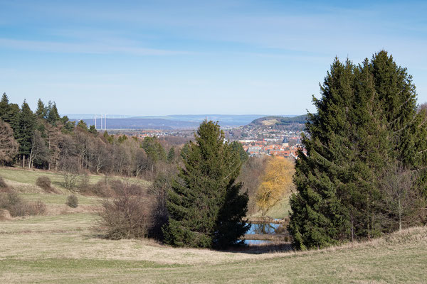 LSG - Trüllketal Goslar März 2020 / 2 - Foto: Regine Schadach - Olympus OM-D E-M5 Mark II - M.ZUIKO DIGITAL ED 12‑100 1:4.0 IS PRO