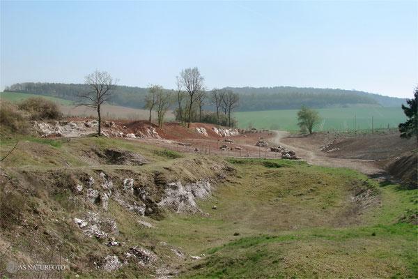 13.Aril 2009 - Blick vom nördlichen Teil der Gipskuhle auf den renaturierten südlichen Teil der Kuhle - Foto: Regine Schadach