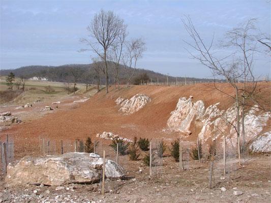 21. März 2009 - Blick auf die Ostseite der Gipskuhle - Foto: Regine Schulz