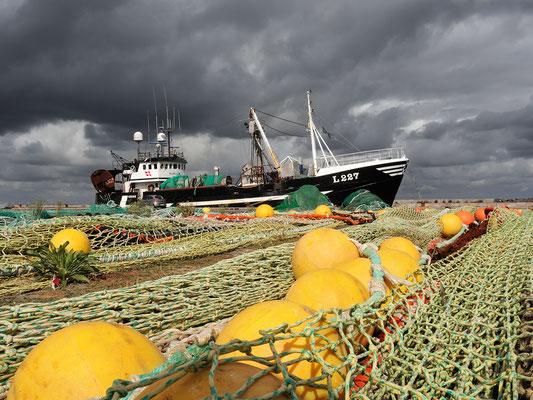 Dänemark Westjütland - im Hafen von Thyborøn - Bild 005 - Foto: Regine Schadach