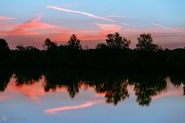 Naturschutzgebiet (NSG) Okertal südlich Vienenburg Oktober 2012 - Bild 022 - Foto: Regine Schadach