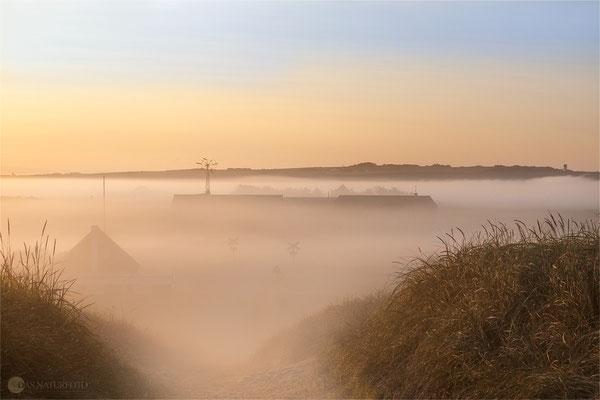 Sonnenaufgang an der Westjütlandküste bei Vrist - Dänemark - Bild 017 Foto: Regine Schadach Olympus OM-D E-M5 Mark II - M.Zuiko Digital ED 12-40 mm 1:2.8 Pro