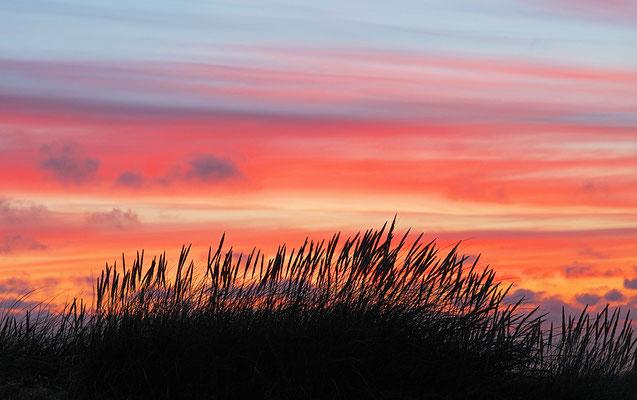 Sonnenuntergang an der Westjütlandküste bei Vrist - Bild 008 - Foto: Regine Schadach