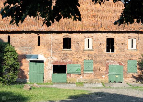 Schön alt! 1 Klostergut Wöltingerode/Goslar (2019) - Foto: Regine Schadach - Olympus OM-D E-M5 Mark II - M.ZUIKO DIGITAL ED 12‑100 1:4.0 IS PRO