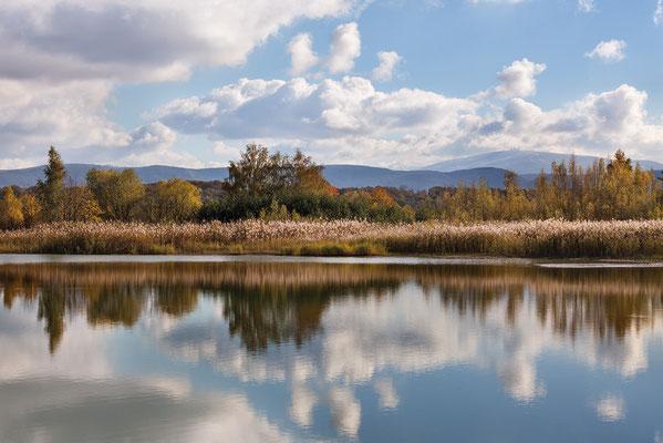 Naturschutzgebiet (NSG) Okertal südlich Vienenburg mit Blick zum Brocken Oktober 2012 - Bild 003 - Foto: Regine Schadach