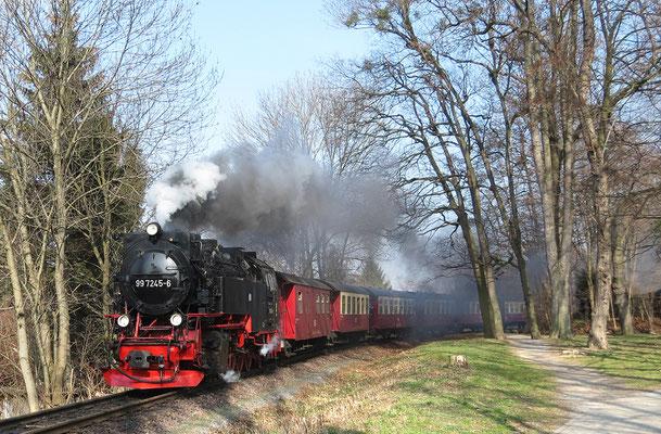 Harzer Schmalspurbahnen - Brockenzug in Wernigerode auf dem Weg zum Brocken - Bild 015 - Foto: Christian Braun