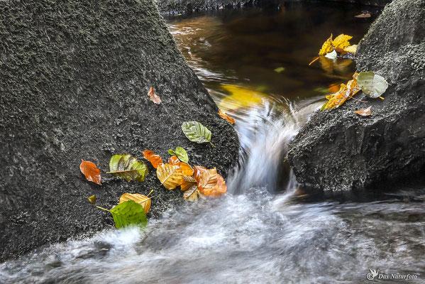 Das Beste an diesem Tag, war das Wasser.  Bild 017 Foto: Regine Schadach