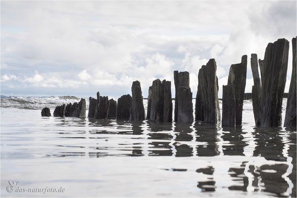 Küstenschutz Foto: Regine Schadach - Olympus OM-D E-M5 Mark II - M.Zuiko Digital ED 12-40 mm 1:2.8 Pro