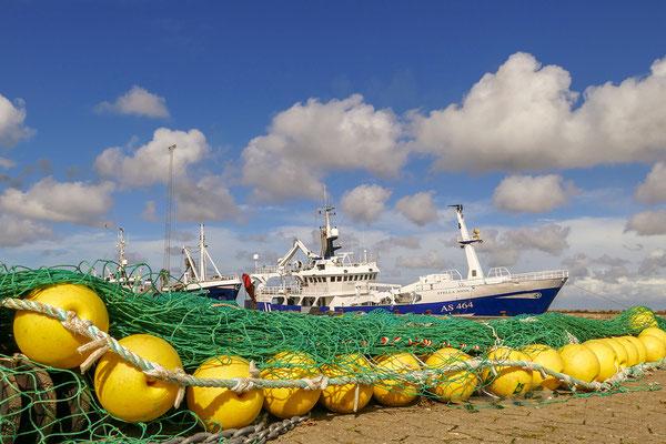Dänemark Westjütland - im Hafen von Thyborøn - Bild 011 - Foto: Regine Schadach