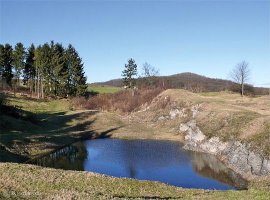 16.Januar 2011 - der nördliche Teil der Gipskuhle steht nach vielen Jahren wieder unter Wasser - Foto: Regine Schadach