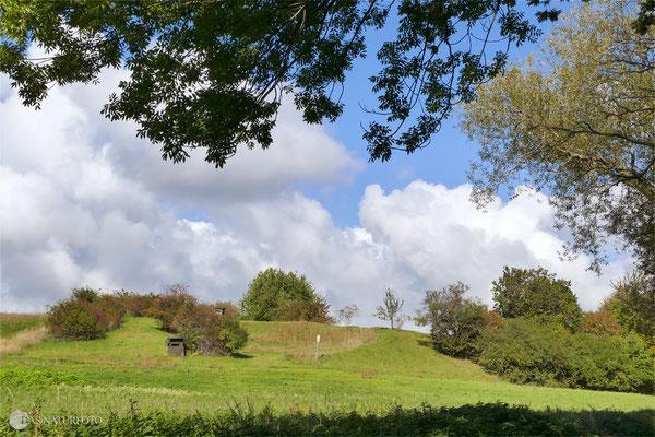 Mergelgrube Krähenholz bei Goslar - Foto: Regine Schadach