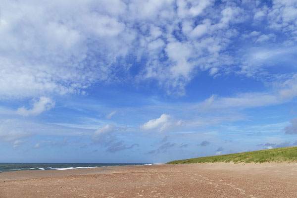 Westjütlandküste bei Vrist - Dänemark - Bild 014 Foto: Regine Schadach