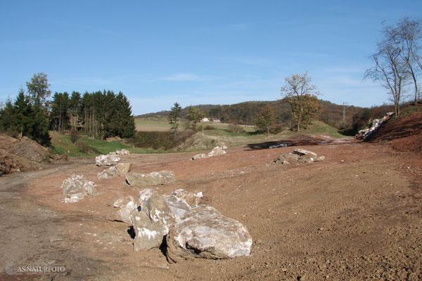 20. Oktober 2008 - die Renaturierungsarbeiten sind so gut wie abgeschlossen - Foto: Regine Schadach