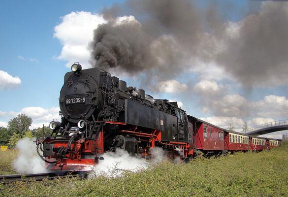 Harzer Schmalspurbahnen - Brockenzug in Wernigerode auf dem Weg zum Brocken - Bild 011 - Foto: Christian Braun