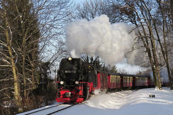 Harzer Schmalspurbahnen - Brockenzug in Wernigerode auf dem Weg zum Brocken - Bild 016 - Foto: Christian Braun