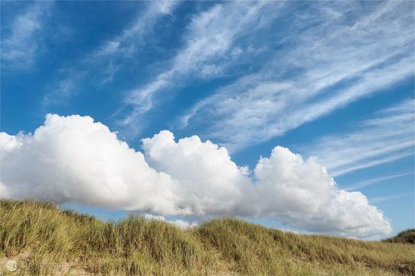 Westjütlandküste bei Vrist - Dänemark - Bild 019 Foto: Regine Schulz Olympus OM-D E-M5 Mark II - M.Zuiko Digital ED 12-40 mm 1:2.8 Pro