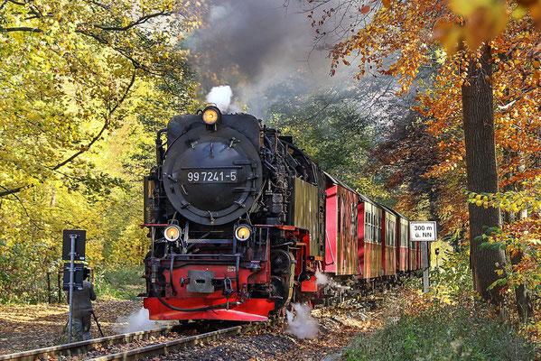 Harzer Schmalspurbahnen - kurz vor dem Haltepunkt Steinerne Renne - Bild 005 - Foto: Regine Schulz