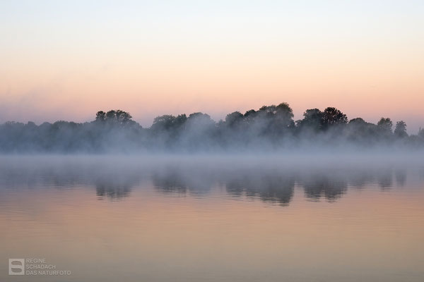 Sonnenaufgang am Salzgittersee Oktober 2021 - Foto: Regine Schadach - Olympus OM-D E-M1 Mark III- M.ZUIKO DIGITAL ED 12‑100 1:4.0 IS PRO