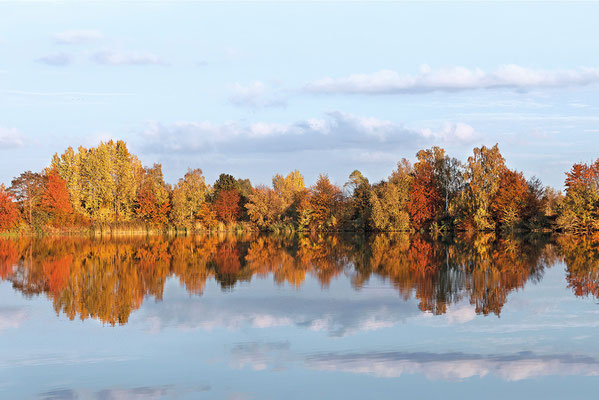 Naturschutzgebiet (NSG) Okertal südlich Vienenburg Oktober 2012 - Bild 001 - Foto: Regine Schadach