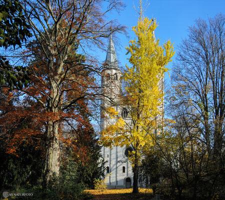 Neuwerkkirche - Foto: Regine Schadach