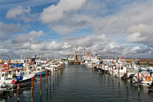 Dänemark Westjütland - im Hafen von Thyborøn Bild 022 Foto: Regine Schulz Olympus OM-D E-M5 Mark II - M.ZUIKO DIGITAL ED 12‑100 1:4.0 IS PRO