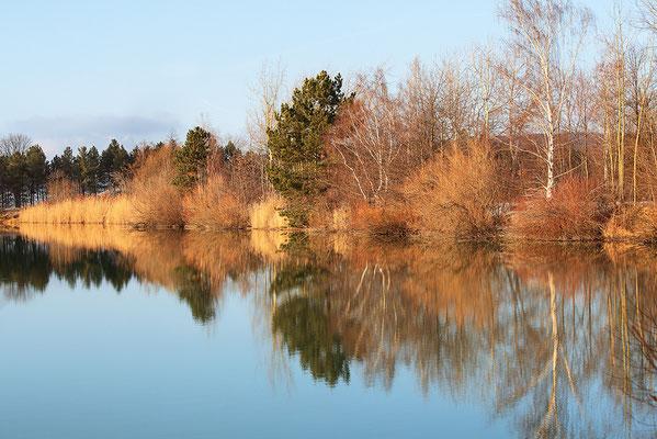 Naturschutzgebiet (NSG) Okertal südlich Vienenburg Oktober 2012 - Bild 008 - Foto: Regine Schadach
