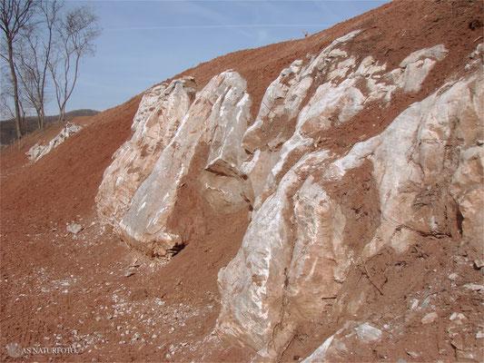 21. März 2009 - die Ostseite der Gipskuhle, freigelegter Gips - Foto: Regine Schadach