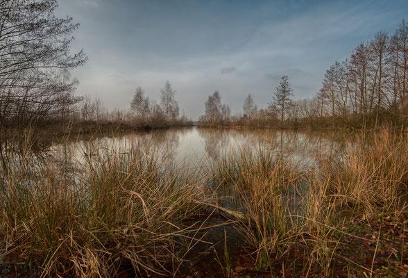 Reindersmeer, NL